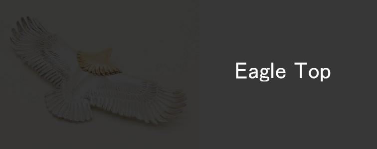 tady&king-eagle